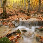 Small waterfall surrounded by Hocking Hills fall foliage