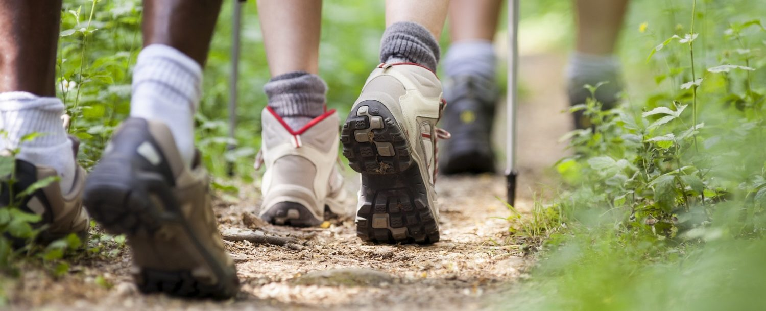 shoes of people trekking and hiking in row