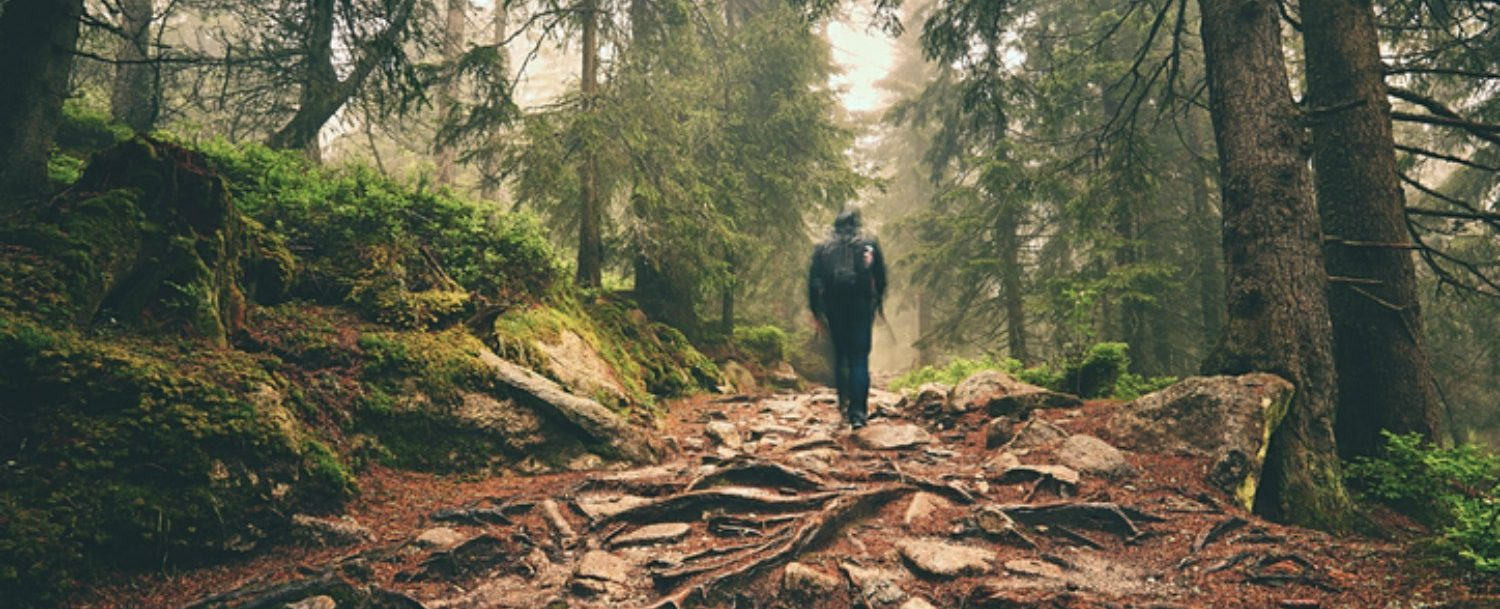 person hiking through woods of a mountain