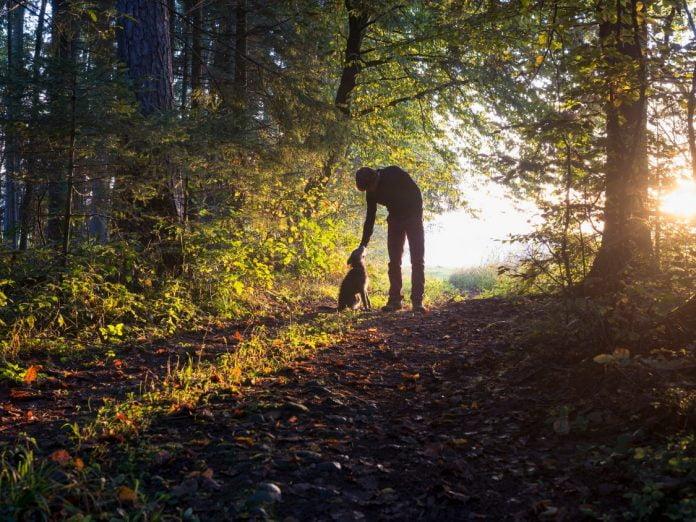 Hocking Hills Dog-Friendly Trails