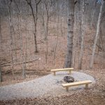 firepit in the woods with benches around