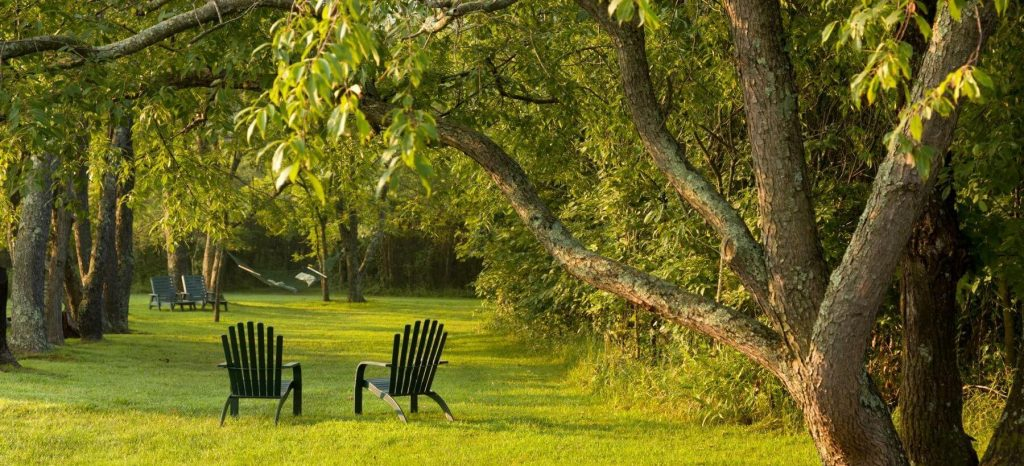 Cedar Falls grounds