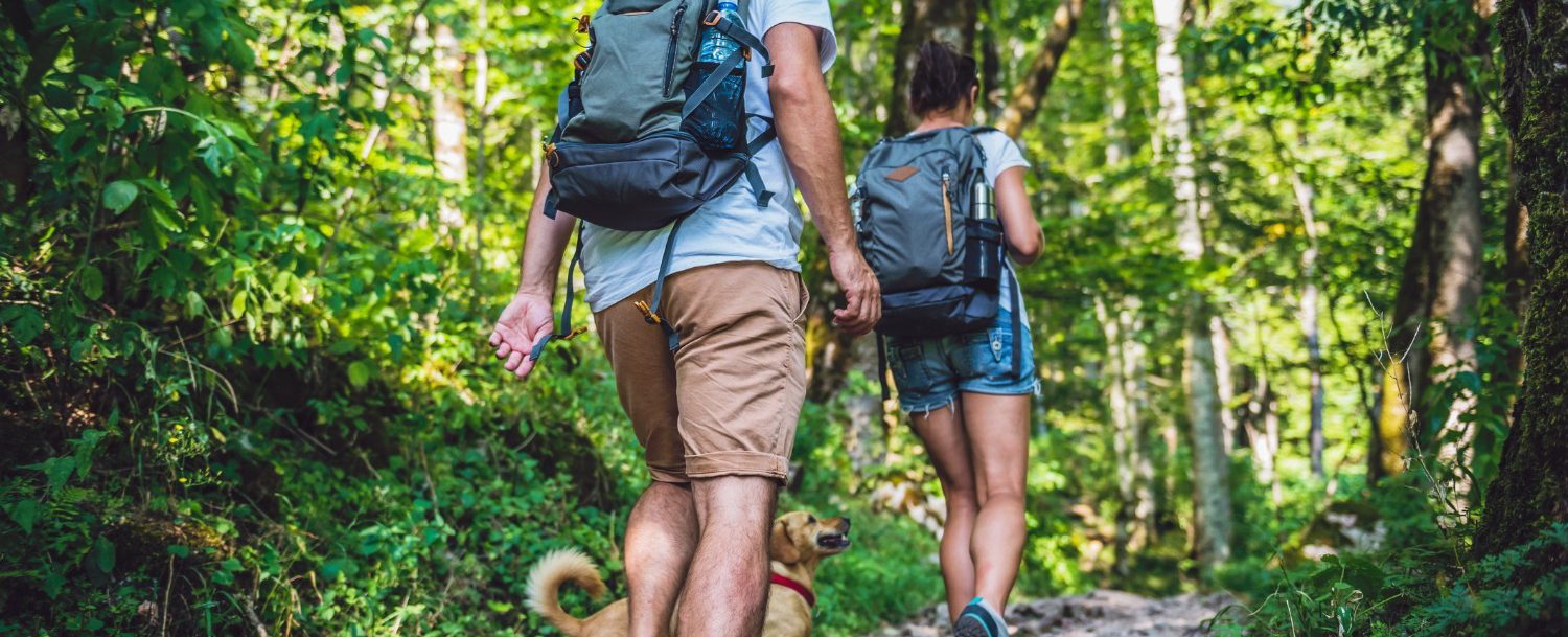 Couple with a dog hiking through the forest